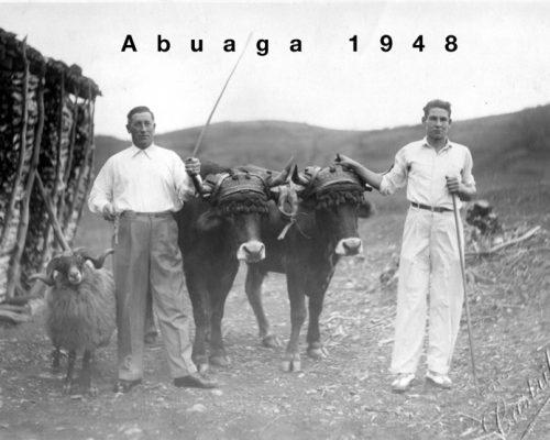 abuaga-1948